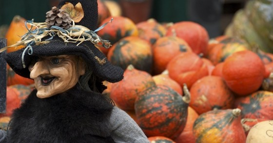 Witch, pumpkin, Naschmarkt